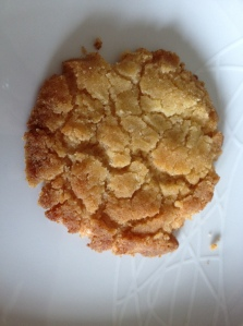 My ginger snap - looks like a real biscuit!!!